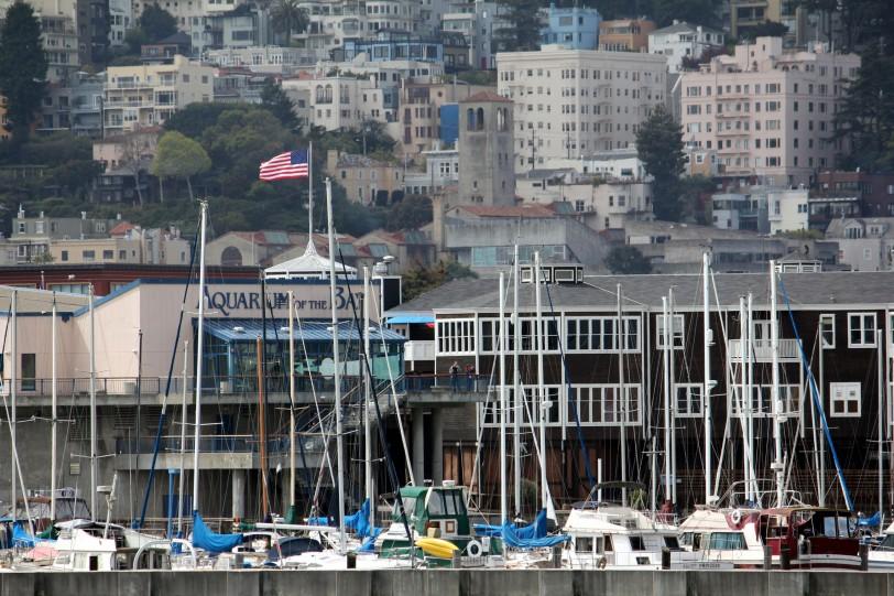 dockboats