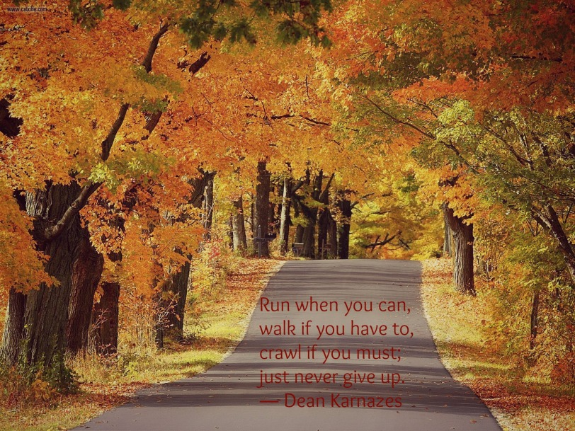 fall_road.jpg
