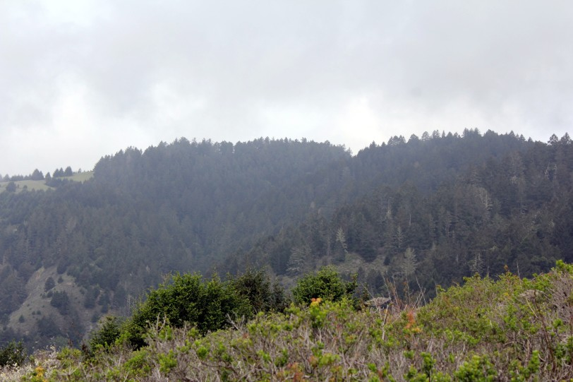 hike10