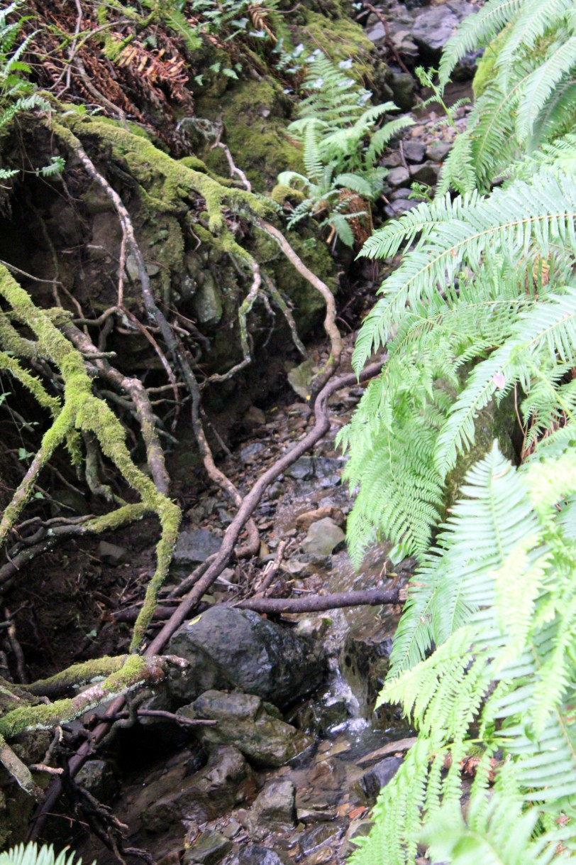 hike5