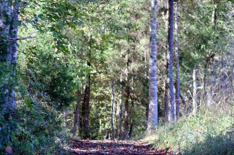 hike8