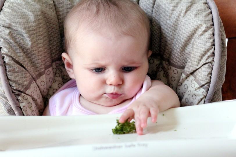 baffledbybroccoli